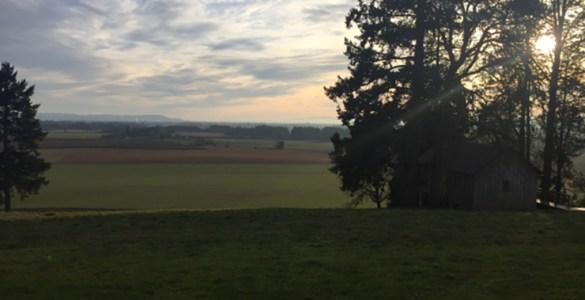 Oregon_Wine_Country