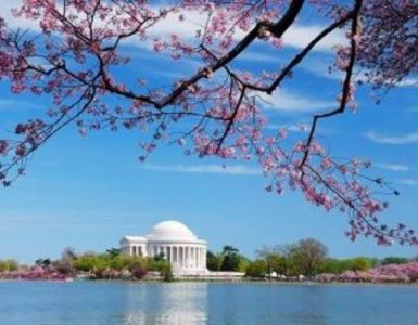 Washington_Spring