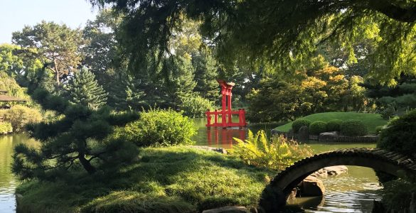 Broklynn Botanical Garden