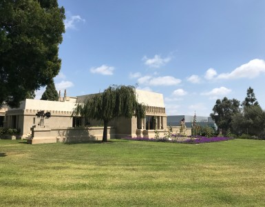 California Romanza & The Hollyhock House
