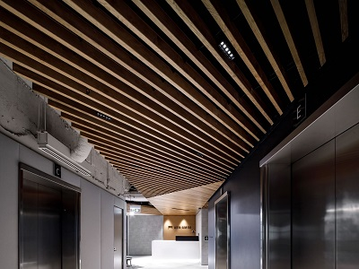 A Passion For Timber Ceilings Architecture Amp Design