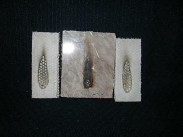 Polycore Australia S Polypropylene Honeycomb Cored