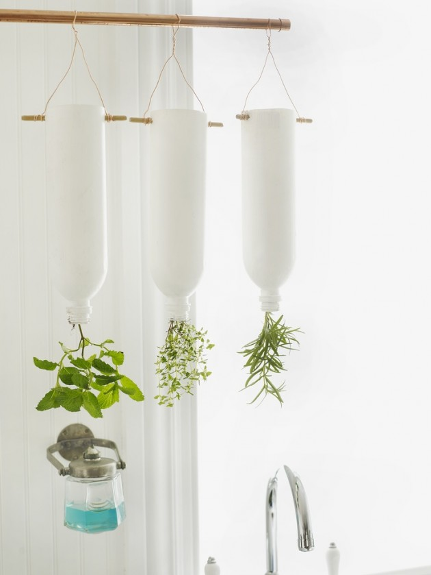 DIY para decorar con plantas