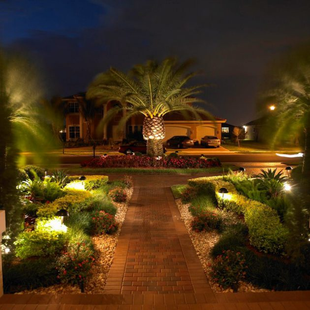 19 Exceptional Ideas To Decorate Your Landscape With Palm ... on Palm Tree Backyard Ideas id=53923