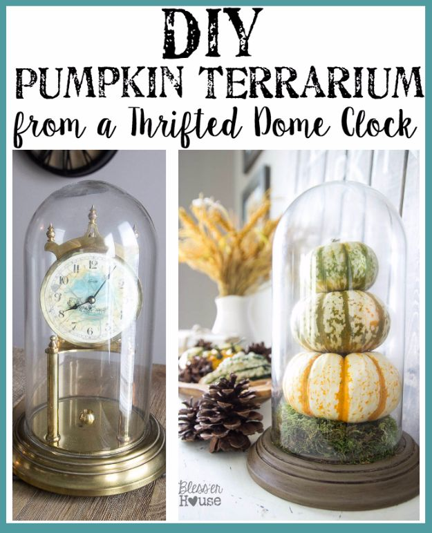 15 Awesome DIY Terrarium Ideas You Should Craft
