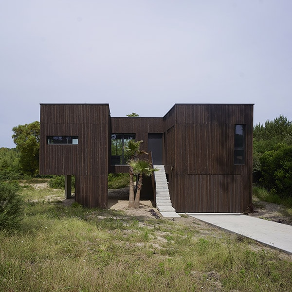 maison bois caméléon