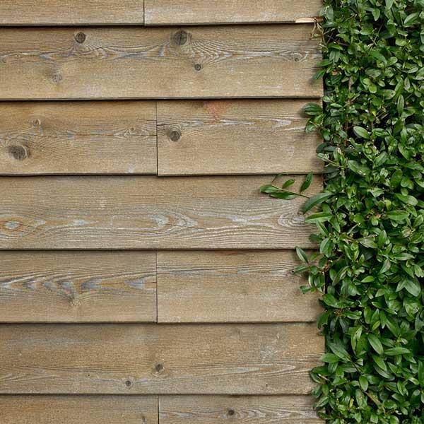 Le bardage bois en façade s'affiche en harmonie avec la nature © Pixabay