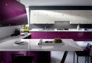 Hi-tech Kitchen_a46Designs