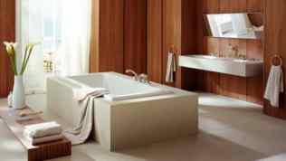 Luxury Bathroom Design 200Ideas by Axor