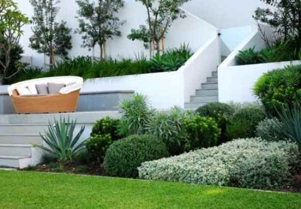 Beautiful Front Garden Design with Perfect Evergreen Plant Arrangement