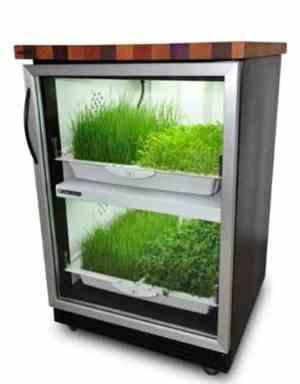 Kitchen Nano Garden _b576ll_Design