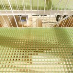 House with Midair living / StudioGreenBlue
