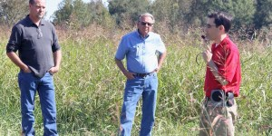 Weed Control in Turf: a Review of the Basics and Recent Updates with Dr. Patrick McCullough