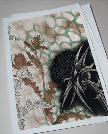 Printmaking Beauty Shot