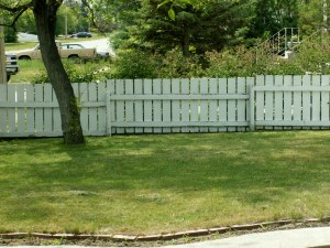 Well-maintained Lawn
