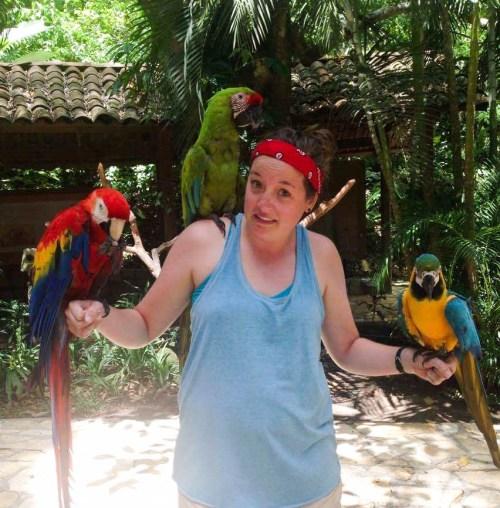 Macaw Mountain 9