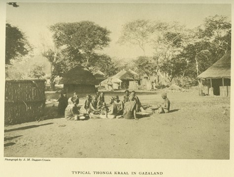 "(""Typical Thonga kraal in Gazaland""): A. M. Duggan-Cronin, The Bantu Tribes of South Africa: Reproductions of Photographic Studies (Cambridge, U.K.: Deighton, Bell, 1935), vol. 4, Henri P. Junod, The Vathonga (The Thonga-Shangaan People), plate 24."