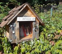 """""""We consider the Little Free Library movement to be very inclusive and we don't want there to be barriers for anybody who wants to be involved"""": Interview with Margret Aldrich, of Little Free Library"""
