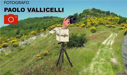 Workshop Fotografico in Natura!
