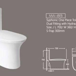 ma 813 one piece toilet marachi