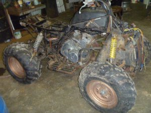 454 Bearcat 4x4 need help with wiring  ArcticChat
