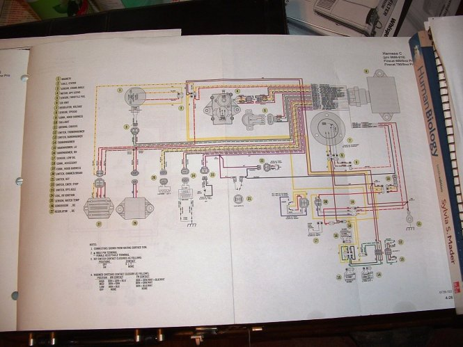 2007 polaris sportsman 500 wiring diagram wiring diagram polaris predator 500 wiring diagram schematics and diagrams