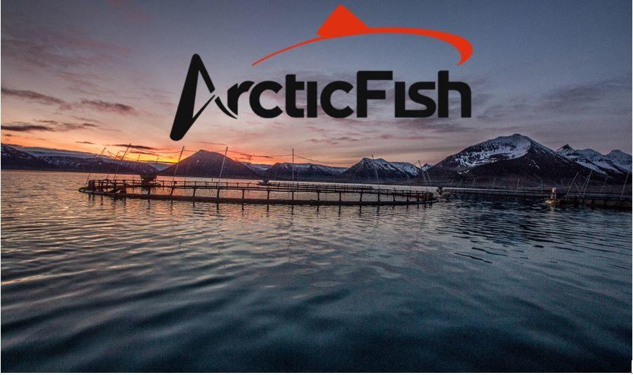 Ársyfirlit Arctic Fish 2020