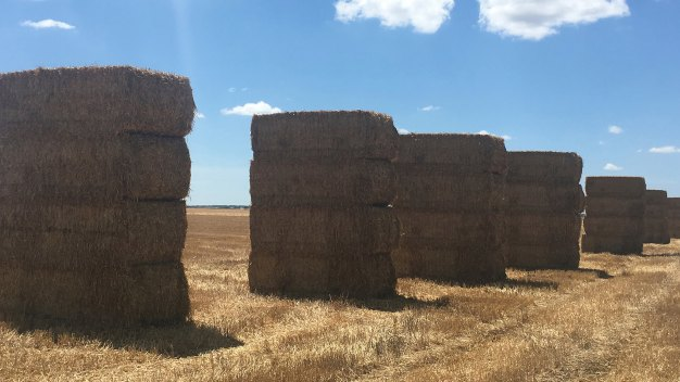 ARCUSIN ACCUMULATEUR BALES BALE CHASER FORSTACK FRANCE 4