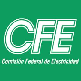 COMISION FEDERAL DE ELECTRICIDAD (1995)