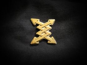 Blitzshield Gold Pin