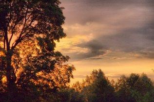 Фото природы. Пейзажи. Текстуры. Профессиональный фотограф в Киеве. 26