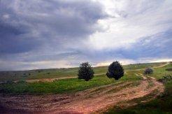 Фото природы. Пейзажи. Текстуры. Профессиональный фотограф в Киеве. 49