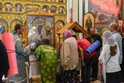 provocation orthodox procession_makarov_0616