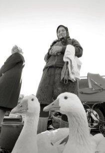 0223_Ukraine_Orthodox_Photo