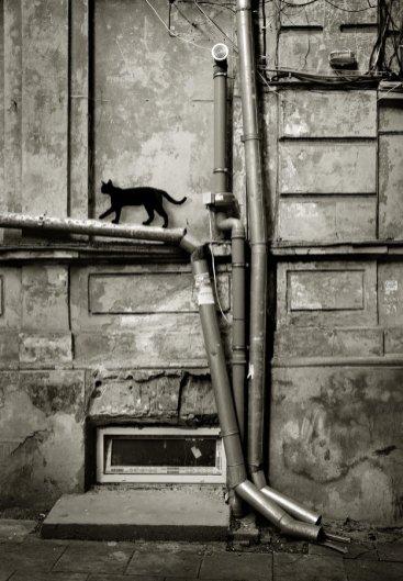 0226_Ukraine_Orthodox_Photo