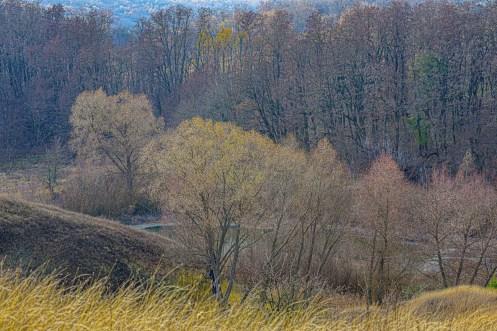 autumn landscape ukraine 0023