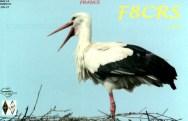 AREG-F8CRS
