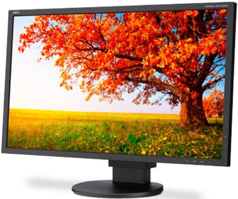 NEC MultiSync EA224WMI LCD