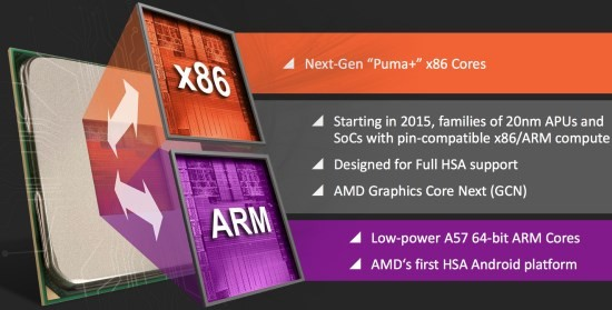 AMD_Project_Skybridge