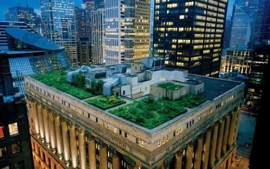 Green_roof_building