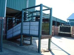 Cattle loading