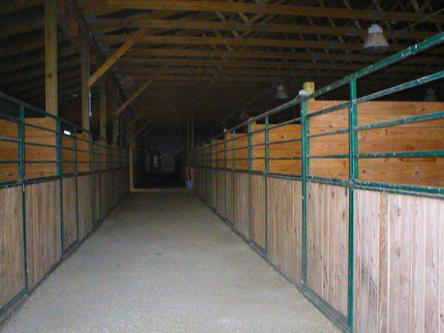 Inside horse barn 3