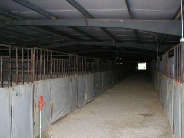 Inside stalls
