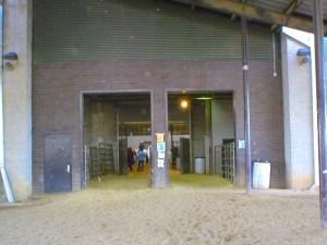 Main arena alleyway