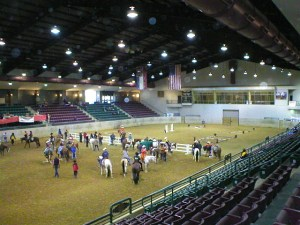Inside main arena