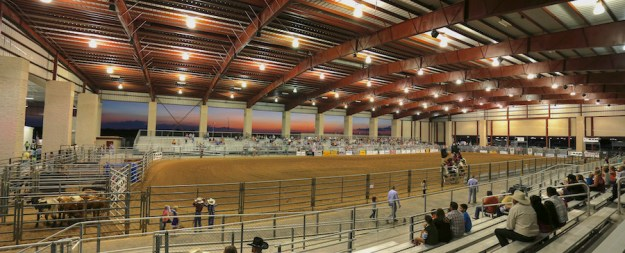willaimson_expo_rodeo