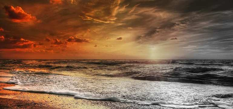 sea-feel-the-call