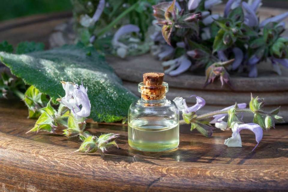 Clary Sage: How Earth Helps You Clear The Fear