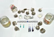 Cocaina e Marijuana - Sequestro