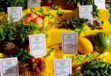 Coldiretti verdura